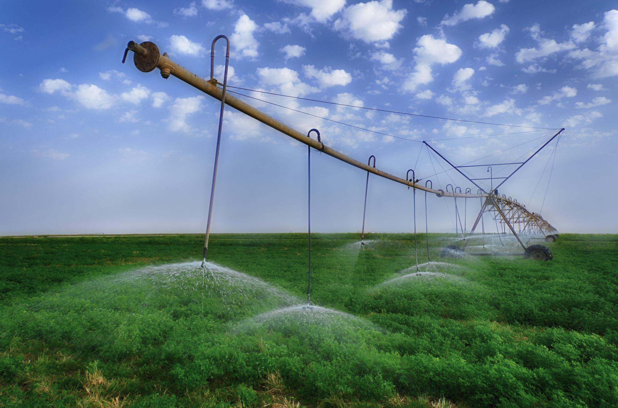 Irkaya Farm- Qatar