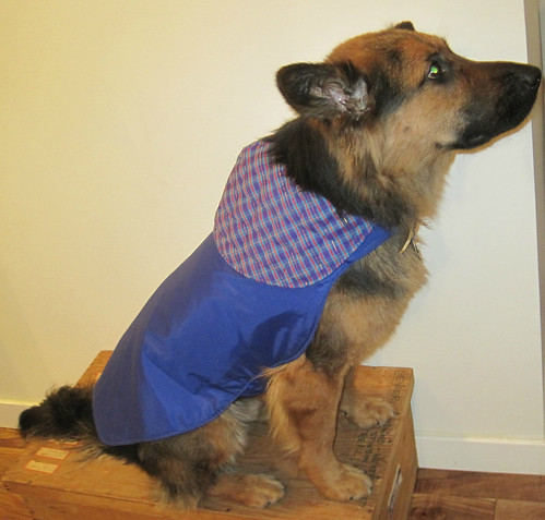 Dog Coat by Craft Collective