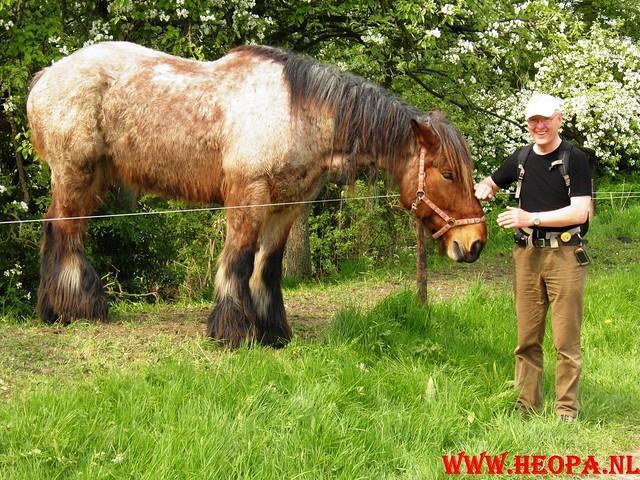 16-04-2011     Rode-Kruis   Bloesem   wandeltocht 26 Km (69)