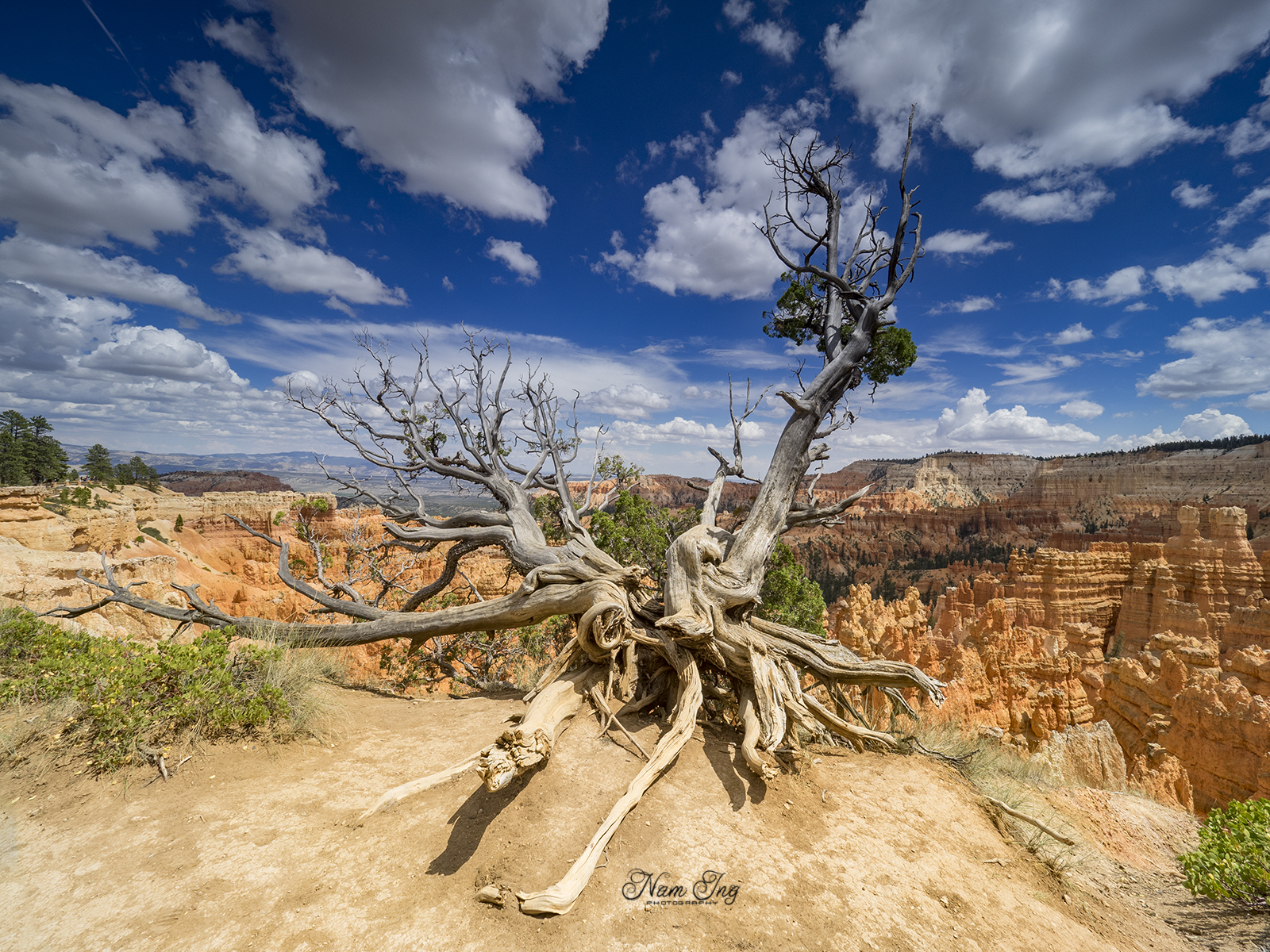 Bryce Canyon [1600x1200] (by Nam Ing)