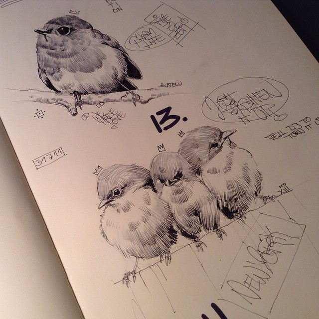 Pencil Bird Art Drawing