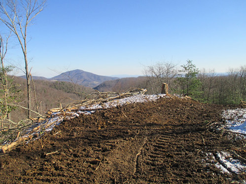 Clearing a view of Cahas at new homesite