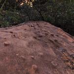 Sandstone Bumps