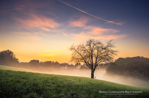 landschaft landscape sunset sonnenuntergang nature natur germany deutschland baum tree feld field sky himmel fog nebel markuslandsmann markuslandsmannphotography sirui pentax k5 sigma leverkusen