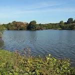 Blick auf den Ümminger See