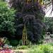 Plantation Garden, Norwich, Norfolk, U.K.