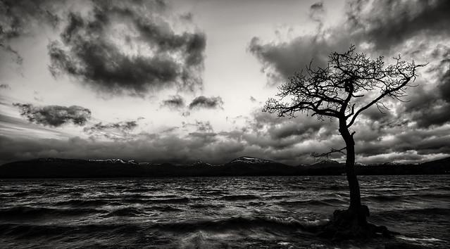 Milarrochy bay Loch Lomand Scotland