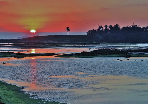sunset reflections nikon sunsets wetlands photoart artisticphotography bolsachica orangecountyca coastalcalifornia bolsachicawetlands 10000views huntingtonbeachca bolsachicaecologicalreserve explored californiawetlands natureasart p510 coastalwetlands sunreflectiononwater sunsetsoverwater walkingbolsachica janeelizabethlazarz pacificcoastalwetlands