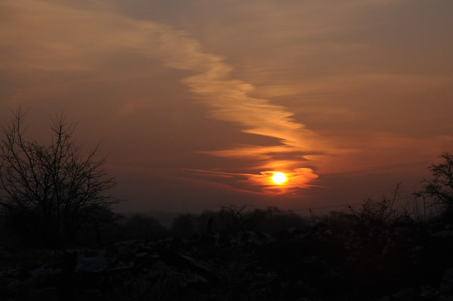 Sonnenuntergang am Brunsholm; Bergenhusen, Stapelholm (42)