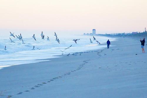 ocean beach sunrise dawn surf florida explore indialantic explored