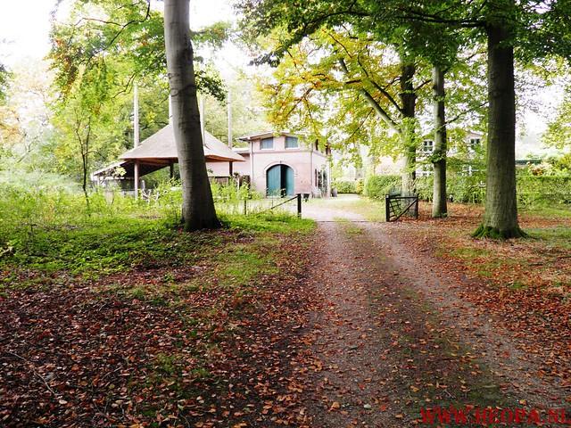 20-10-2012     Wedeblick-   Driebergen        25 Km (142)