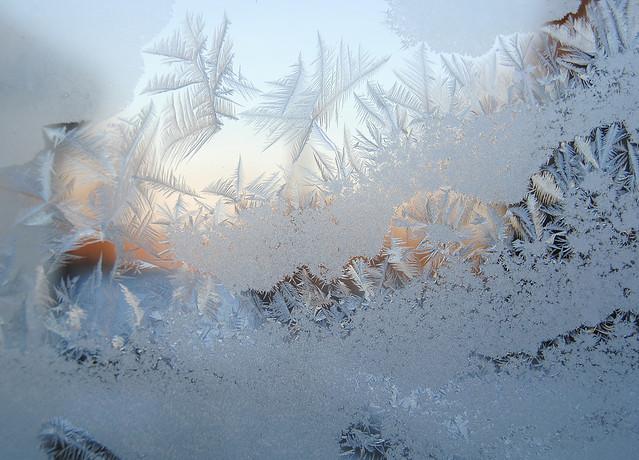 window frost patterns