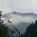 Nad Logarskou dolinou, foto: Petr Nejedlý