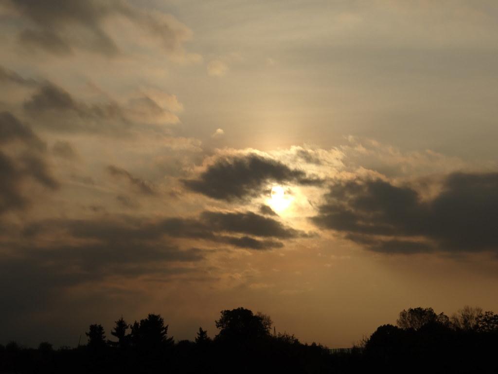 Fast alle Vogelarten beginnen so oder so vor Sonnenaufgang zu singen, die ersten schon, wenn es noch fast lückenlos dunkel ist. Der Sonnenaufgang ist dabei der Referenzzeitpunkt, ebenso Sonnenuntergang. . Verfolgst Du ihn, verschwindet er nach kurzer Zeit wieder, wer auf ganz spezielles Mantra steht, der ist sicherlich schon einmal auf die Idee gekommen ein Gespenst zu feiern02613