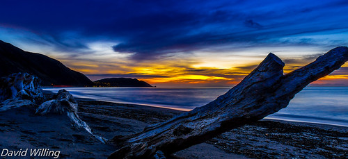 sunset seascape beach sunrise landscape long exposure driftwood