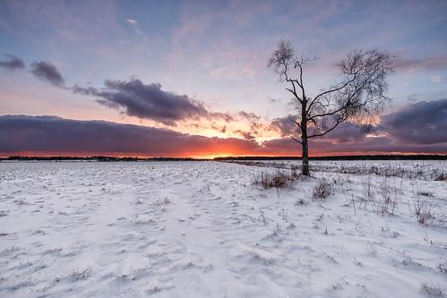 christmas winter sunset landscape efs1022mm 70d