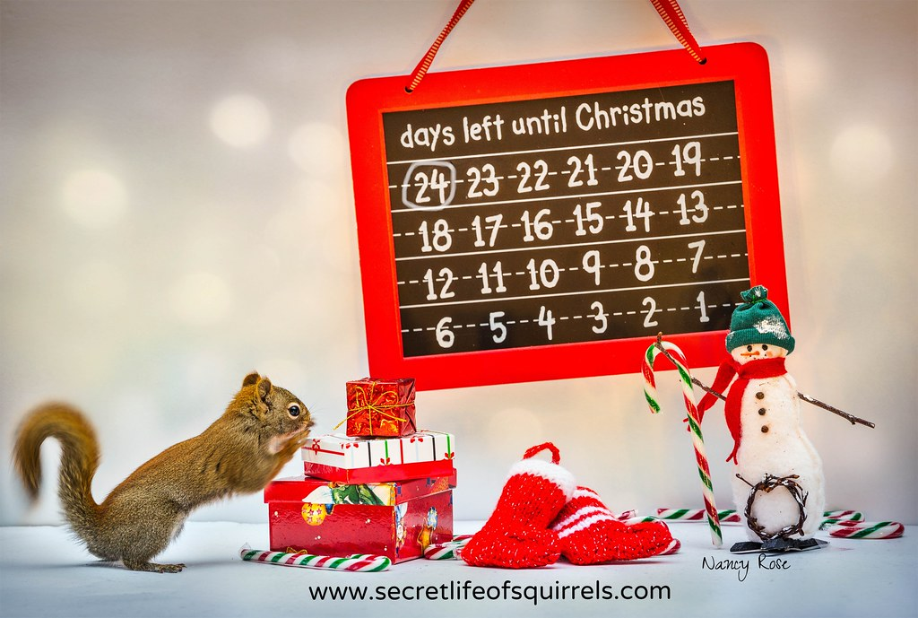 How Many Days Left Until Christmas.24 Days Left Until Christmas I Got Some News Today That
