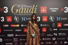 Catifa vermella VII Premis Gaudí (82)