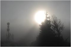 Šerák - cesta za sluníčkem