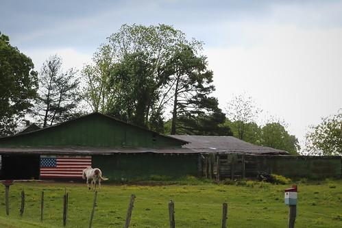 horse barn northcarolina granitefalls