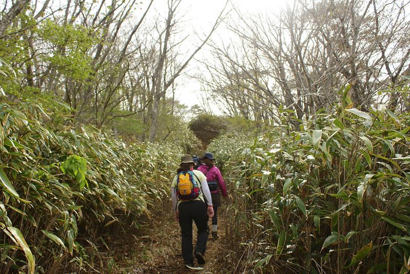 2014-05-06_02160_九州登山旅行.jpg