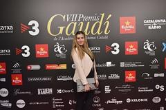 Catifa vermella VII Premis Gaudí (54)