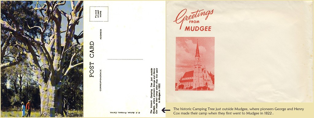 Mudgee Postcard Front And Back With Envelope Links To In