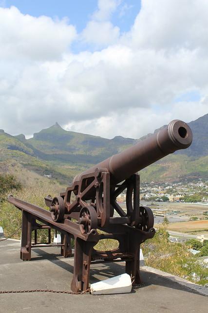 Citadelle cannon