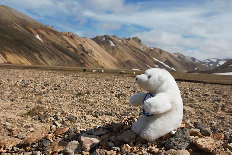 Lars découvre Landmannalaugar et il se ferait bien un petit méchoui