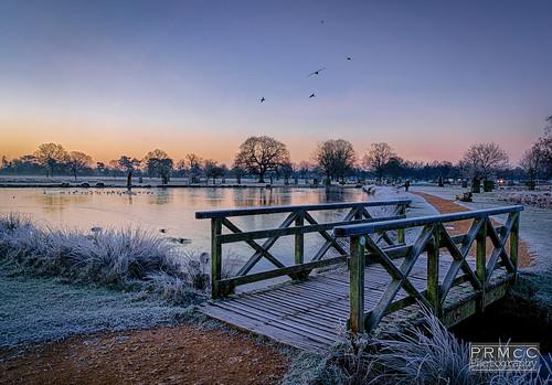 uk winter england sunrise landscape photography unitedkingdom hdr bushypark hamptonwick a6000