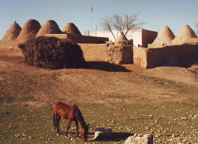 Harran village, south east Turkey