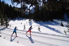 Kananaskis - XC Skiing
