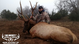 Trophy Elk Hunts at No Mercy Hunting   by No Mercy Hunting Services