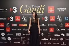 Catifa vermella VII Premis Gaudí (49)
