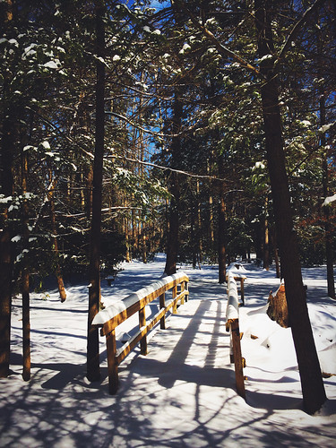winter nature outside outdoors photography play hike views