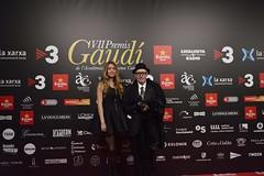 Catifa vermella VII Premis Gaudí (8)