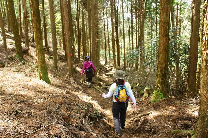 2014-05-06_02616_九州登山旅行.jpg