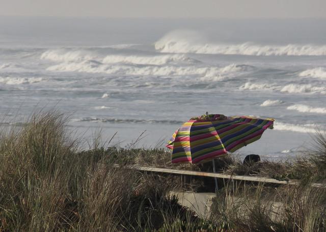 windy day at Ocean Beach; San Francisco; January 25, 2015