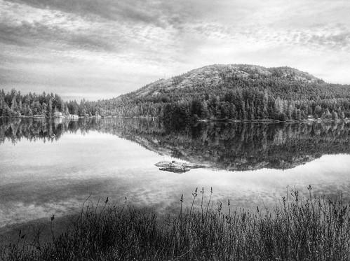 lake reflection vancouverisland hdr victoriabc shawniganlake