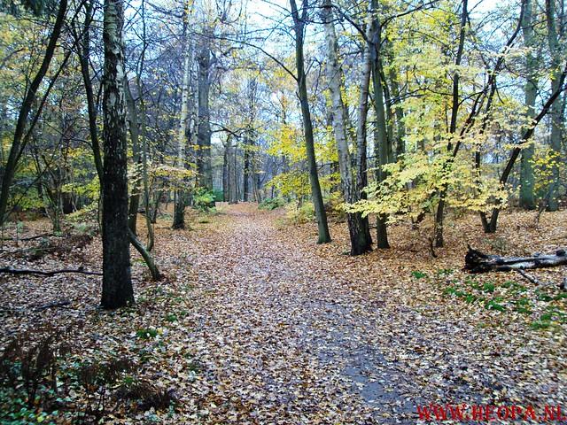 15-11-2009            Gooise lus       18.5 KM    NS Wandeltocht  (6)