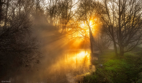 landscape mist park sunrise fog morning spring water river sun light tree dawn valley riverside england sunrays miltonkeynes sony a7r ouzel duck glow countryside f64g80r1win