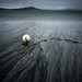 The Buoy by Greg Whitton Photography