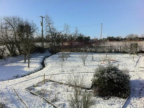 ireland winter irish snow garden landscape view cork telegraphpole newmarket htt iphone4 mountainviewbb ilobsterit telegraphtuesday 2015onephotoeachday