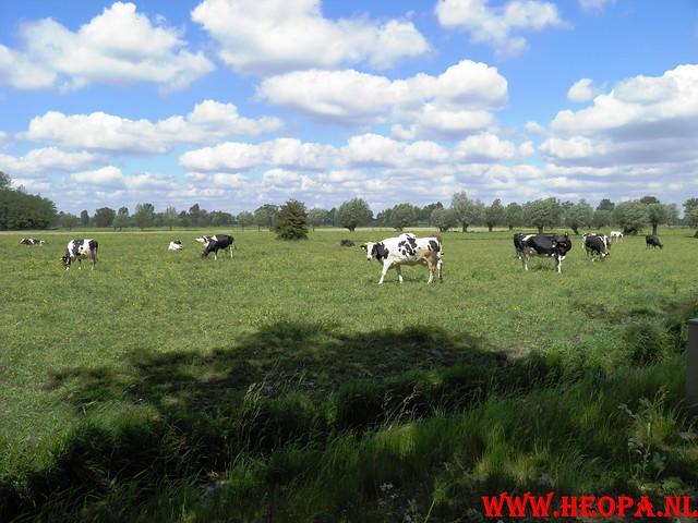 14-05-2011   Doorn 40 Km  (51)