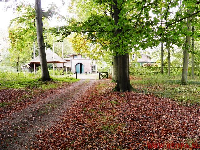 20-10-2012     Wedeblick-   Driebergen        25 Km (141)