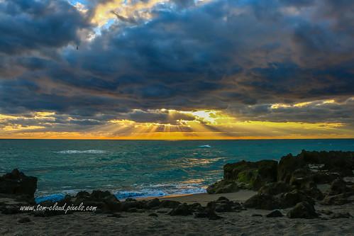 sunsunriserays dawn clouds cloudy sky morning hutchinsonisland stuart florida usa landscape seascape outdoors outside ocean atlantic atlanticocean canon 70d canon70d
