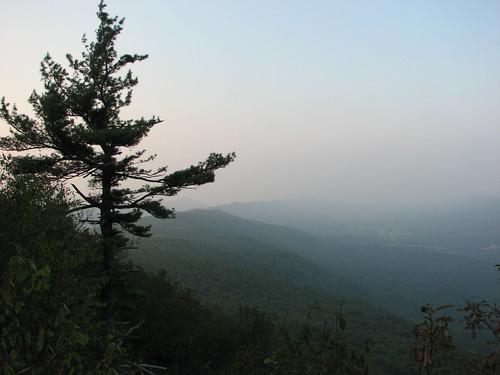 sunset mountain tree geotagged pennsylvania valley geolat3995028 geolon77936411