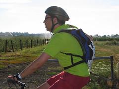 Vineyards too   by mighty.hobnob
