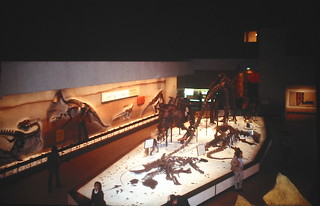 Smithsonian Dinosaur Hall in 1979 | by Piedmont Fossil