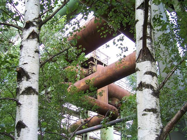 Emscher Park/ Landschaftspark Duisburg-Nord: nature?